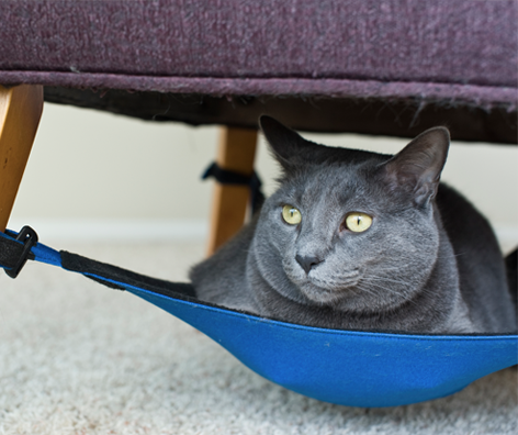 a space saving cat hammock your feline will love  cat crib cat hammock  the best cat hammock for your kitty  rh   catcrib